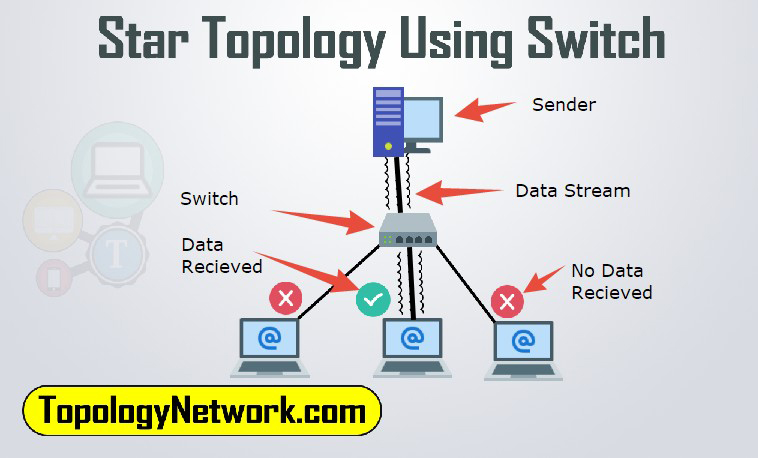 star topology switch