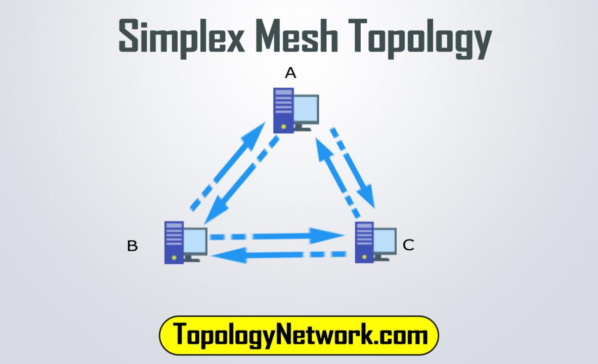 simplex mesh topology example