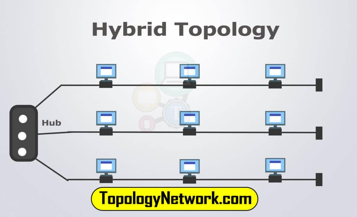 star bus hybrid topology