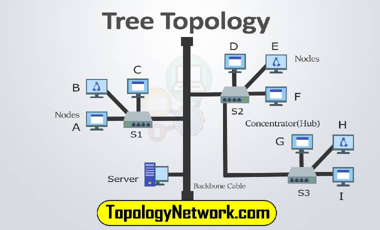What Is Tree Topology Network  Definition